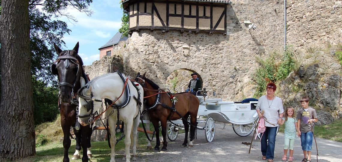 Burg Falkenstein im Harz Foto: Weirauch