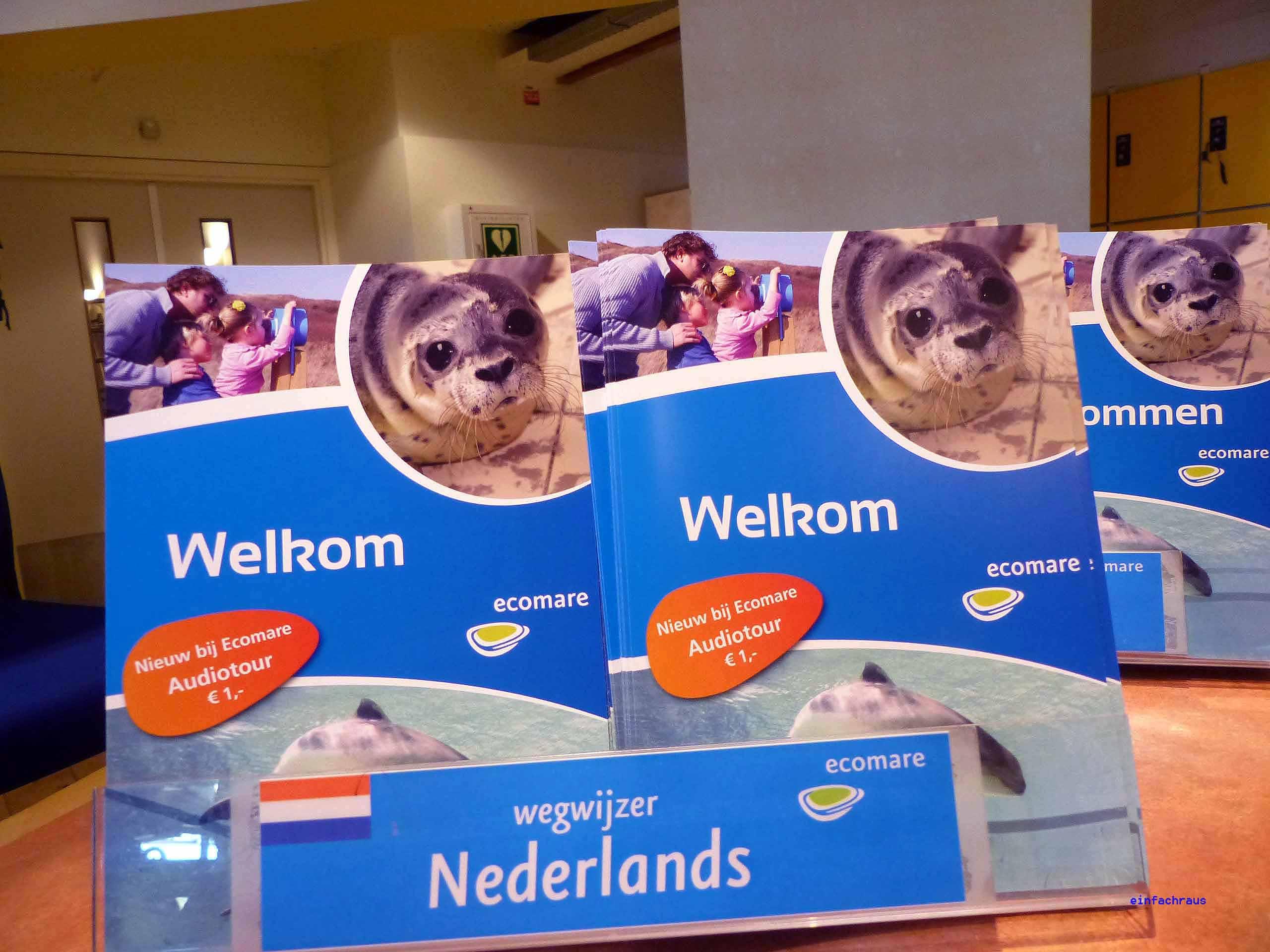 Texel Niederlande