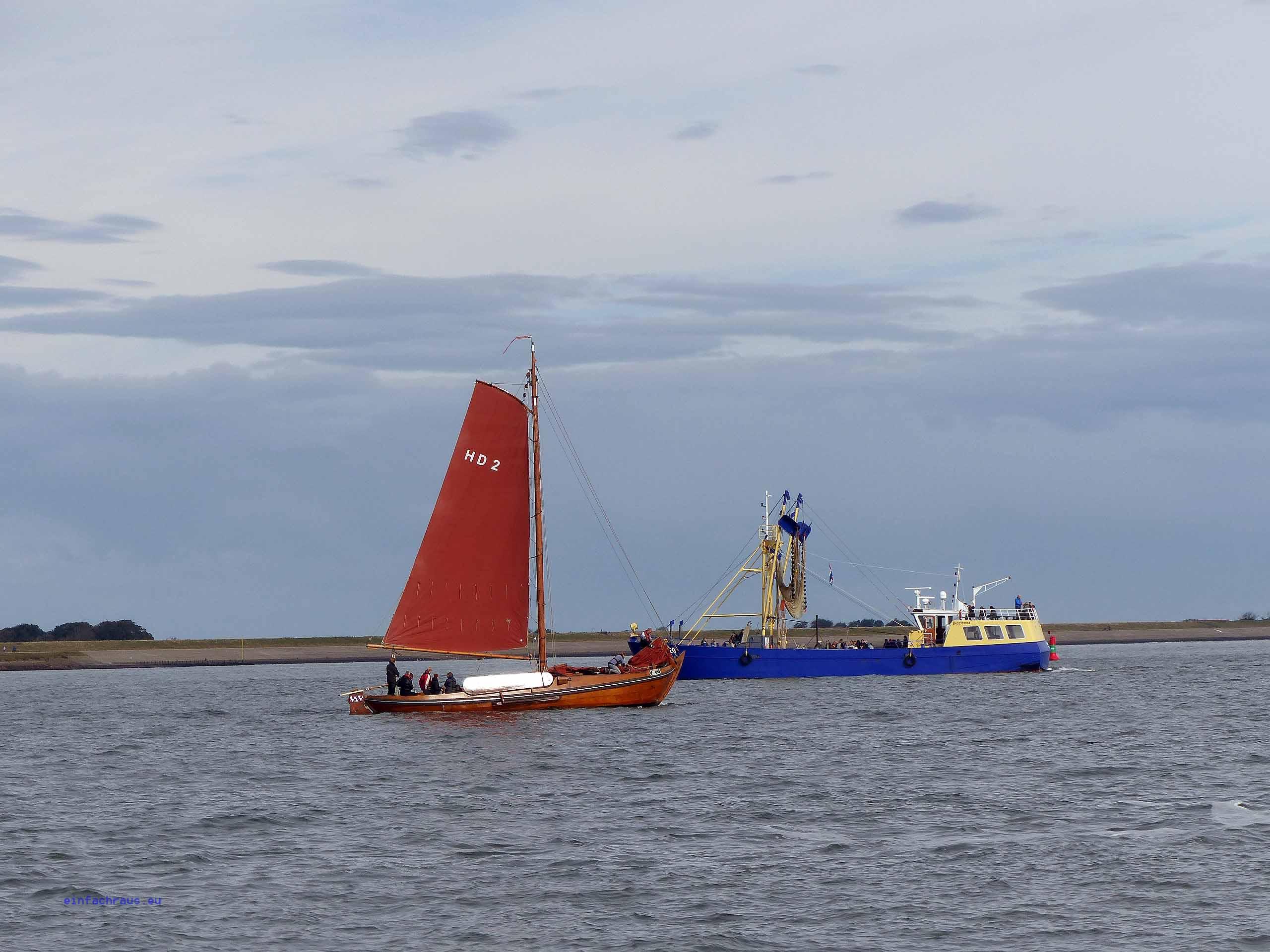 Texel Niederlande Krabbenkutter
