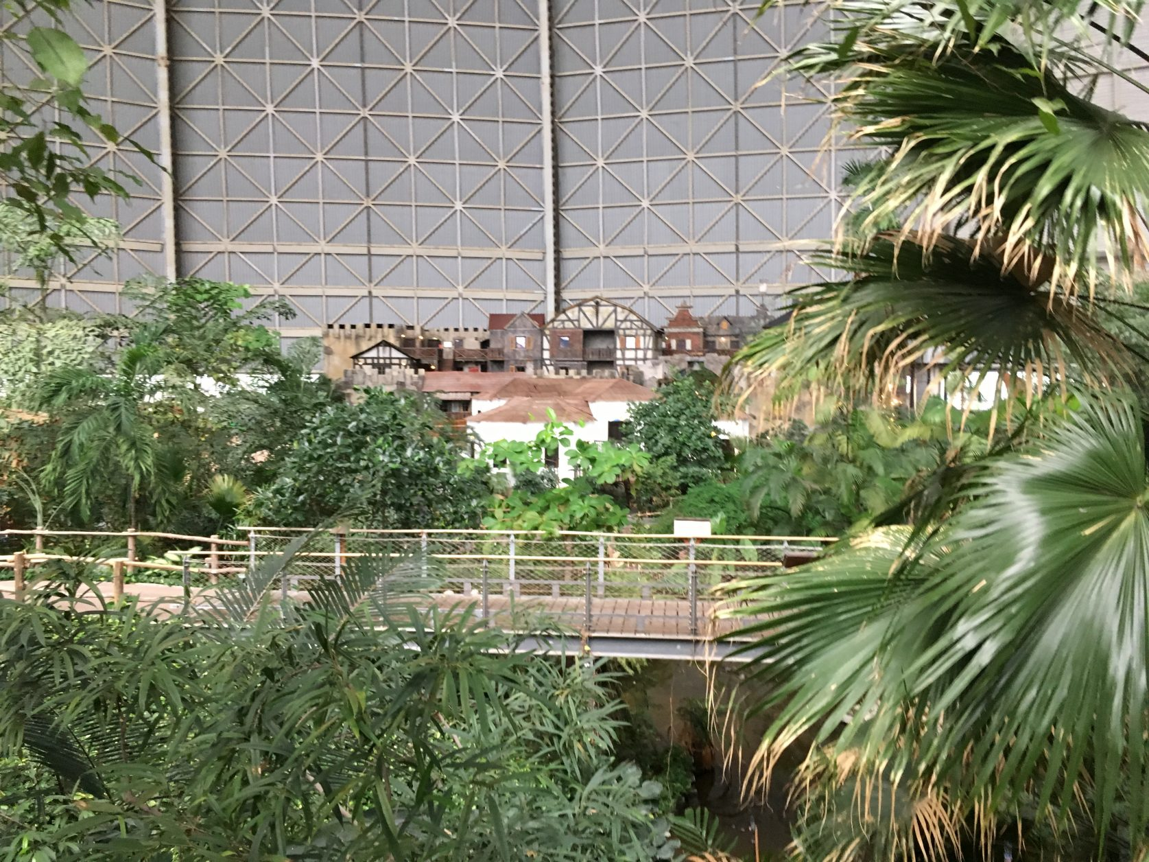Palmen, die einst im Botanischen Garten von Berlin standen, schmücken den größten Indoor Regenwald Europas, Foto: D.Weirauch,