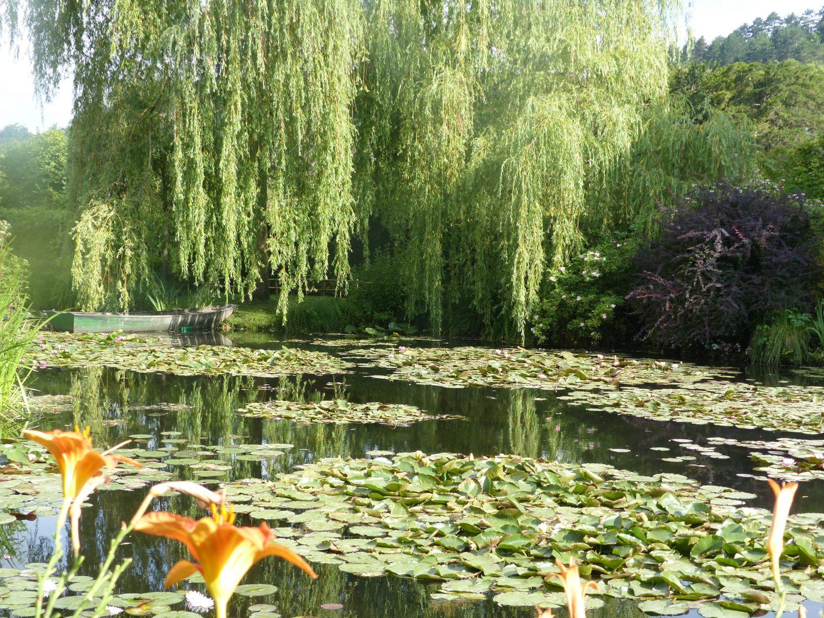 Der berühmte Seerosenteich in Monets Garten Foto: Kärstin Weirauch