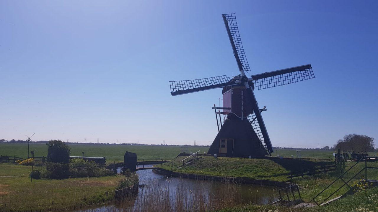 Niederlande Holland Mühle
