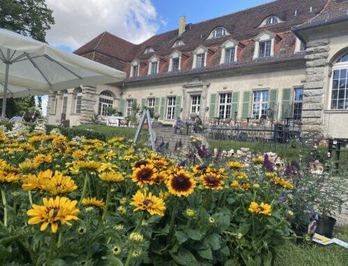 LebensArt im Schlosspark von Schloss Kartzow zeigt Trends für Garten, Wohnen und Lifestyle