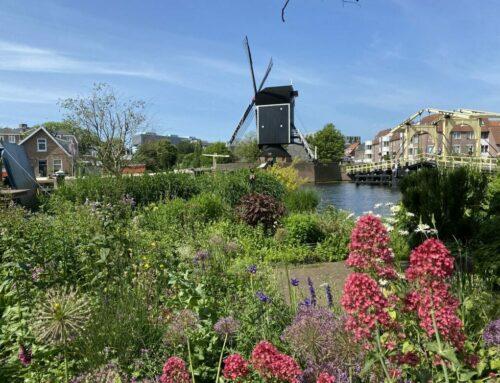 Sehenswerte Altstadt von Leiden
