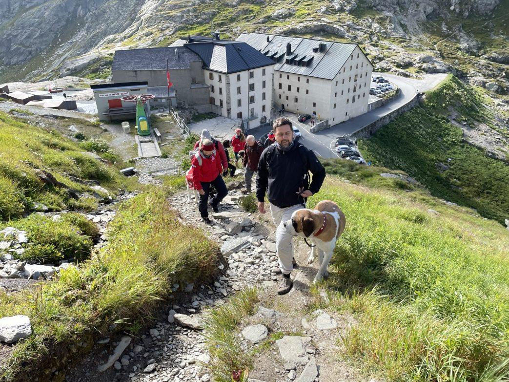 Aufstieg mit Bernhardiner, im Hintergrund Hospiz auf dem Grossen St. Bernhard