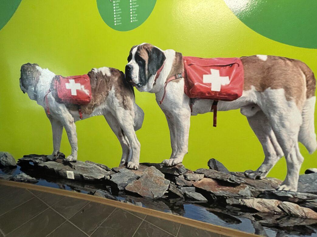 Schweiz.Barry.Wallis