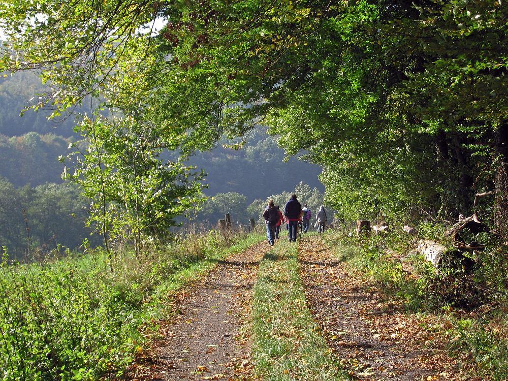 laubachwandern02 Vogelsberg